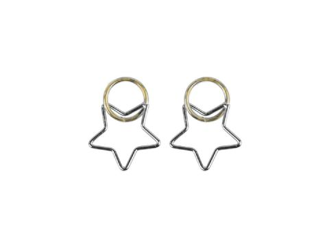 BENOITE 2 TONE STAR EARRINGS SILVER